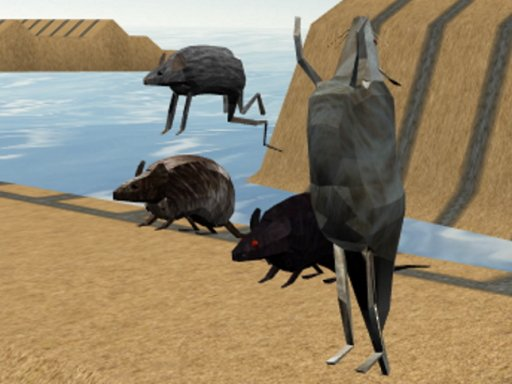 Play Mouse Race Islands Game