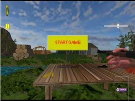 Play West Shooter Game