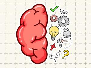 Play Brain Tricky Puzzles Game